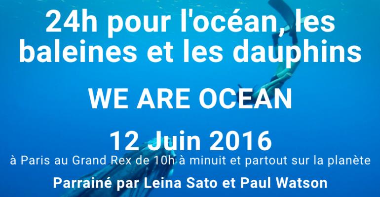 24h-pour-l-ocean